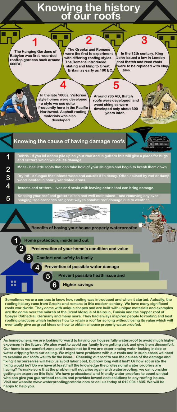 Knowing your roofing types Infographic