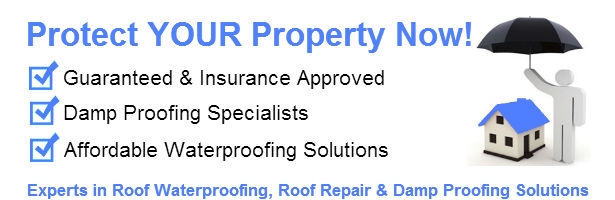 waterproofing mountain view